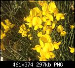 Щракнете върху изображението за по-голям размер  Име:Снимка от 2019-09-02 00-32-06.png Прегледи:      126 Размер:297.3 KB ID:10153