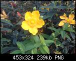 Щракнете върху изображението за по-голям размер  Име:Снимка от 2019-09-02 00-32-56.png Прегледи:      126 Размер:238.5 KB ID:10154