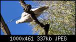 Щракнете върху изображението за по-голям размер  Име:IMG_20210327_141956 (1).jpg Прегледи:      142 Размер:337.1 KB ID:10705
