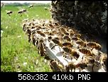 Щракнете върху изображението за по-голям размер  Име:734012_191422744339262_1522337712_n.png Прегледи:      1490 Размер:410.2 KB ID:3024