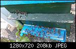 Щракнете върху изображението за по-голям размер  Име:viber_image_2021-06-17_22-42-24.jpg Прегледи:      57 Размер:208.3 KB ID:10750