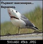 Щракнете върху изображението за по-голям размер  Име:D9C750D0-9986-400C-BF38-C3162F8F51E2.jpeg Прегледи:      213 Размер:44.7 KB ID:10646